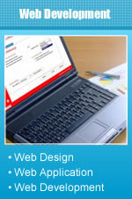 Syntactics Web Applications Development : What We Can Do For Our Clients and How We Do It