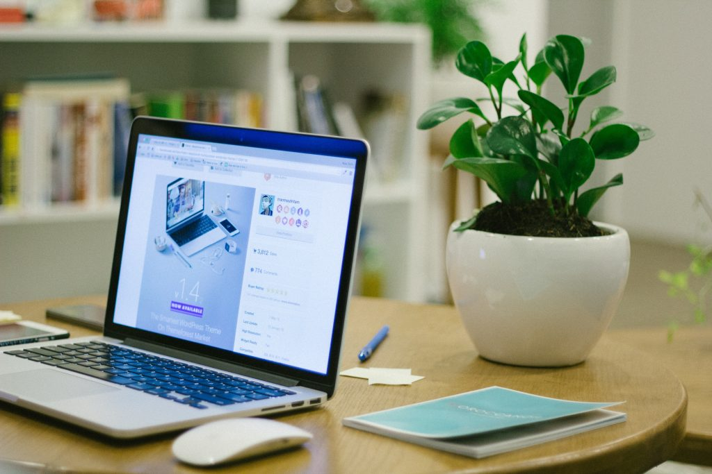 laptop on table in front of plant with website product page instead of physical store
