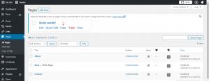 WordPress Website Development Add a Page