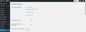 WordPress Website Development Static or Dynamic Page