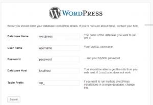 WordPress Website Development Configure WordPress Site Information