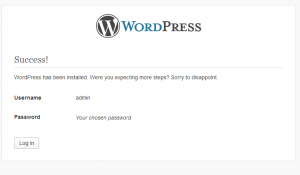 WordPress Website Development WordPress Successfully Installed