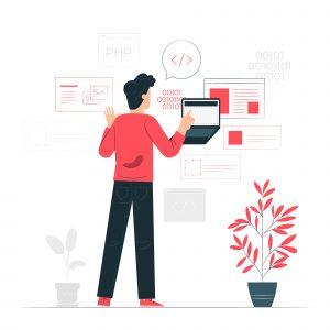 Full Stack Developer coding laptop plant red