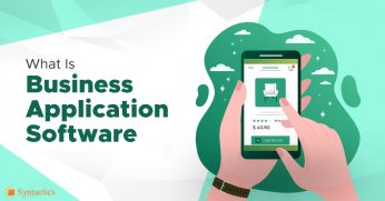 What is Business Application Software